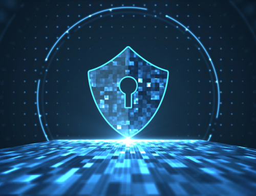 Security Solutions for Virtual and Physical Environments: Keep Your Business Safe
